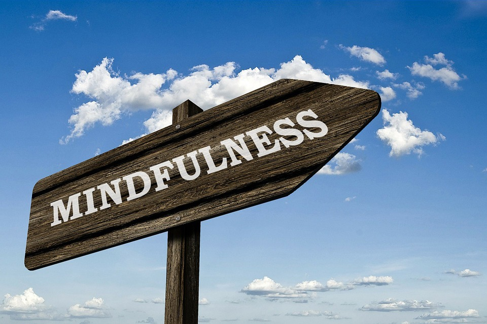 Cultivating Mindfulness In Your Life